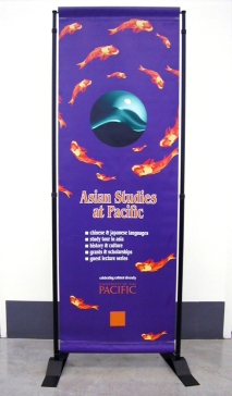Asian Studies banner