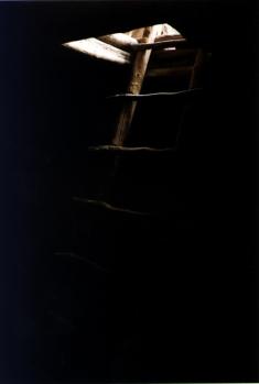 color kiva ladder