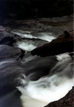 New River Gorge, WVA 4
