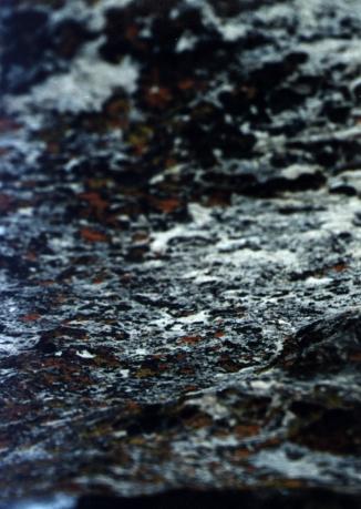 moss rock #2