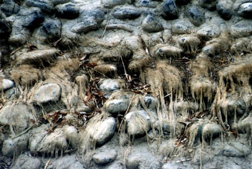 Wyoming Irrigation 2